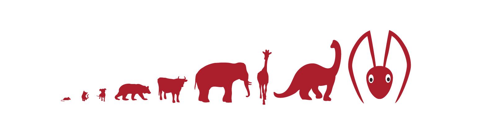 ma-animal-line-4